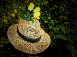 straw-hat-1752236_960_720