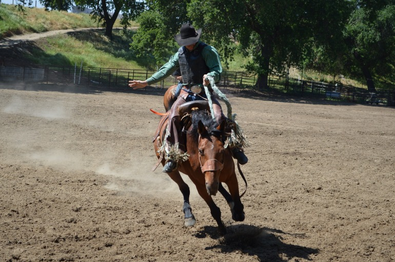 rodeo-727858_1920